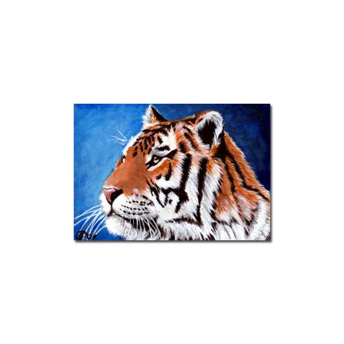 TIGER 7 portrait big cat feline pencil painting Sandrine Curtiss Art Limited