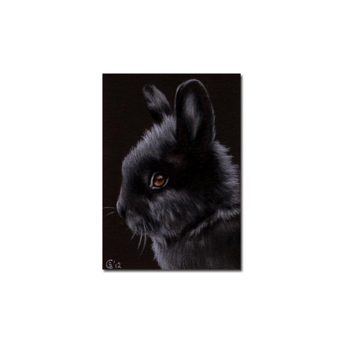 BUNNY 98 rabbit black dutch Easter pet pencil painting Sandrine Curtiss Art