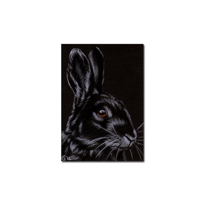 BUNNY 94 rabbit black dutch Easter pet pencil painting Sandrine Curtiss Art