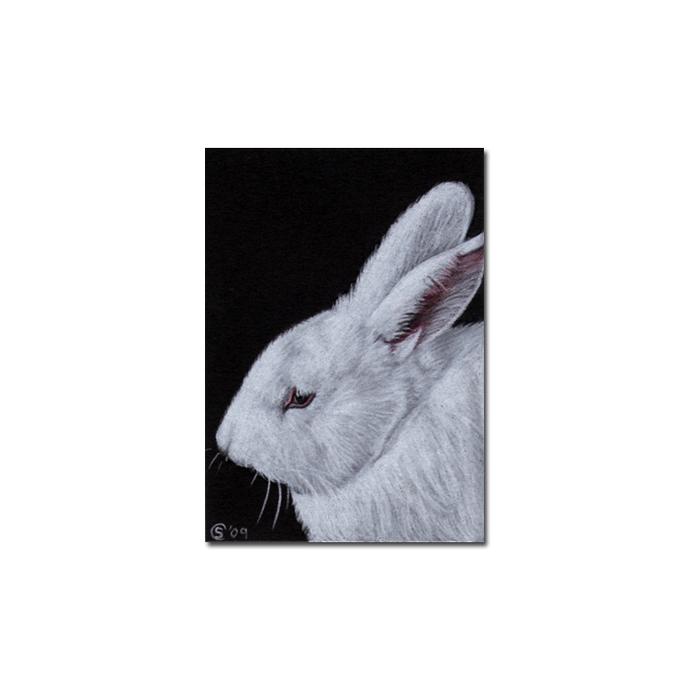 BUNNY 57 rabbit black dutch Easter pet pencil painting Sandrine Curtiss Art