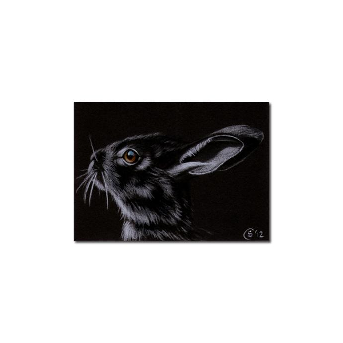 BUNNY 97 rabbit black dutch Easter pet pencil painting Sandrine Curtiss Art