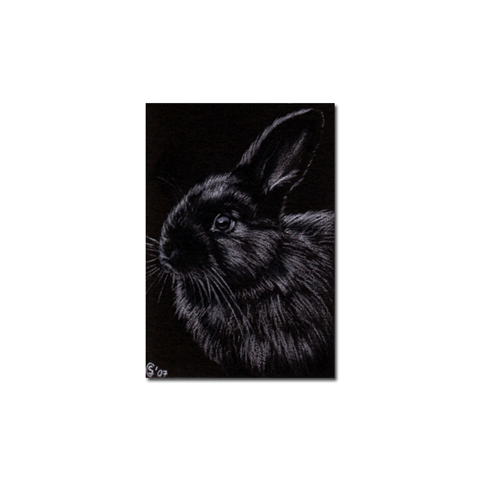 BUNNY 7 rabbit black dutch Easter pet pencil painting Sandrine Curtiss Art