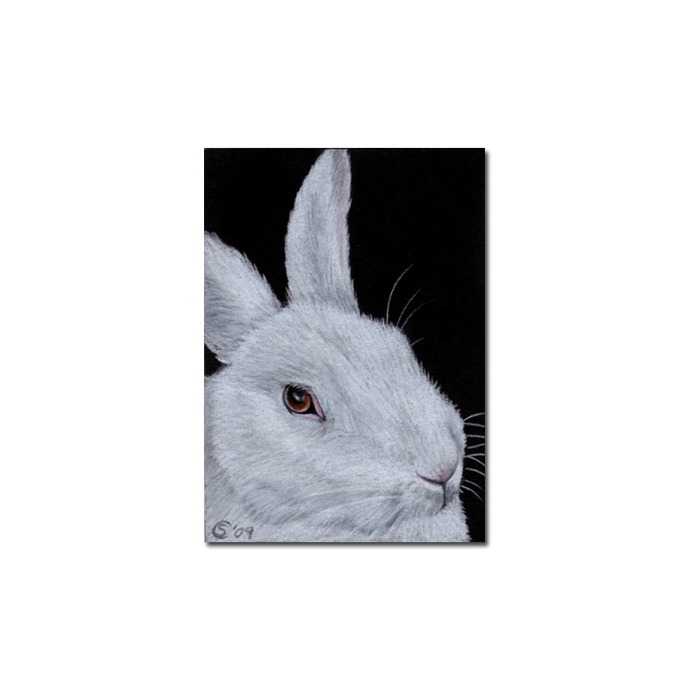 BUNNY 55 rabbit black dutch Easter pet pencil painting Sandrine Curtiss Art