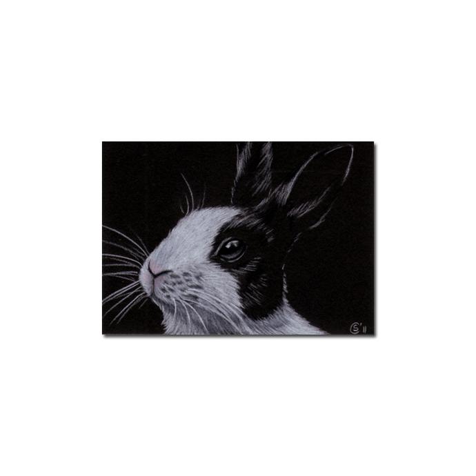 BUNNY 77 rabbit black dutch Easter pet pencil painting Sandrine Curtiss Art
