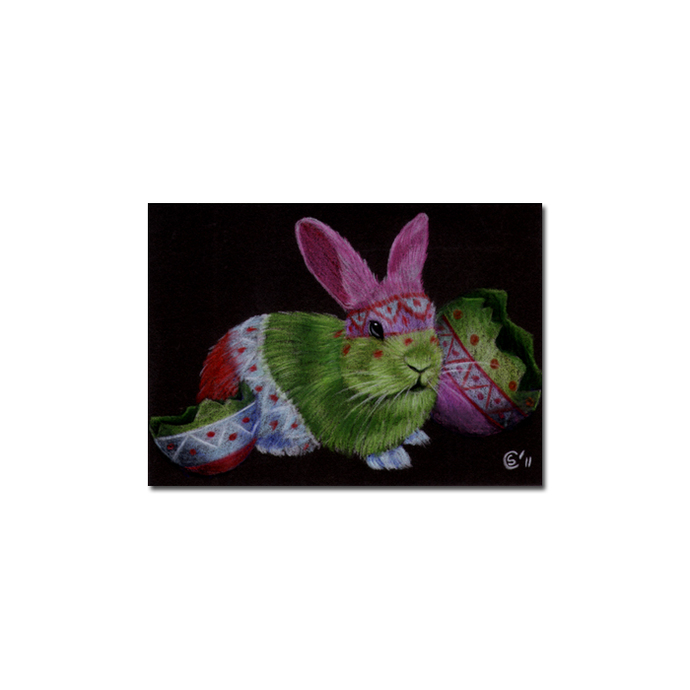 BUNNY 78 rabbit black dutch Easter pet pencil painting Sandrine Curtiss Art