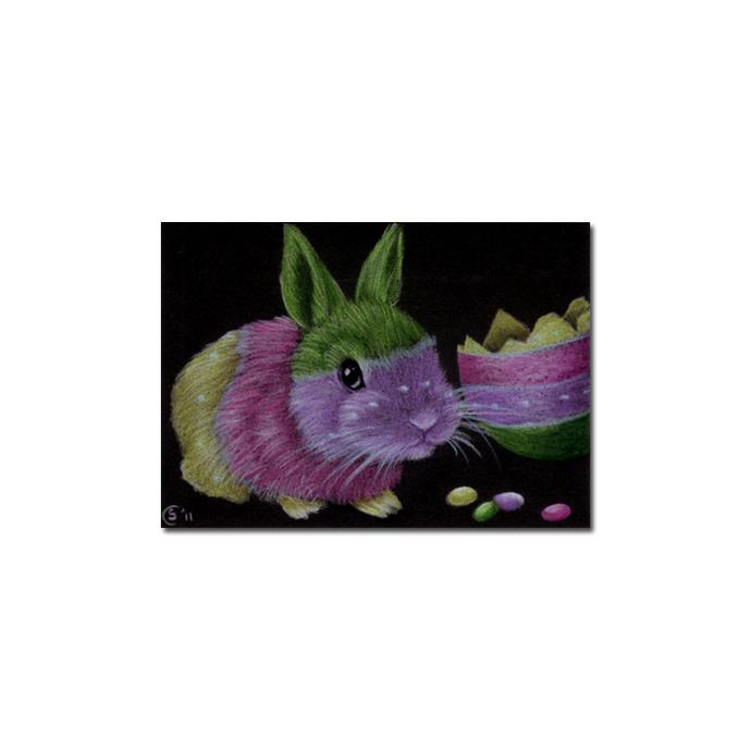 BUNNY 82 rabbit black dutch Easter pet pencil painting Sandrine Curtiss Art