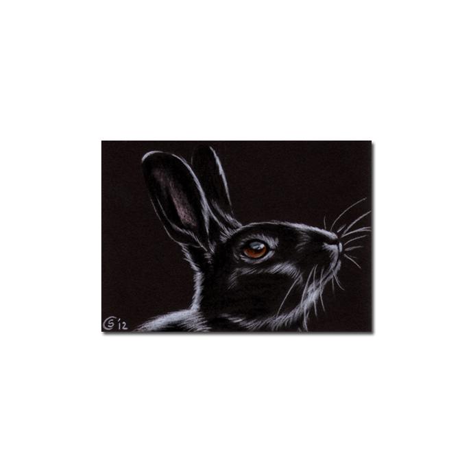 BUNNY 93 rabbit black dutch Easter pet pencil painting Sandrine Curtiss Art