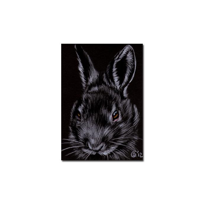 BUNNY 101 rabbit black dutch Easter pet pencil painting Sandrine Curtiss Art
