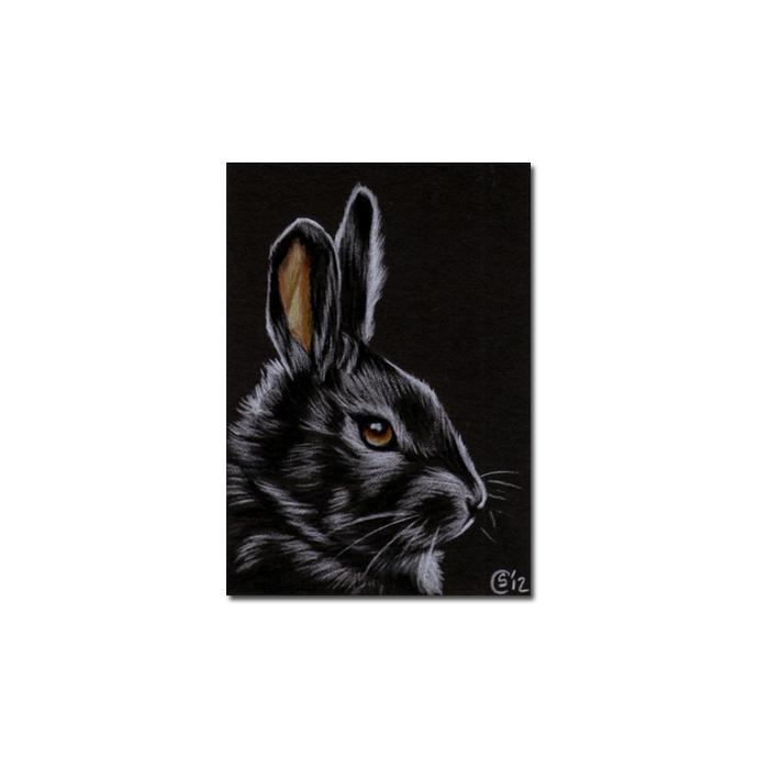 BUNNY 103 rabbit black dutch Easter pet pencil painting Sandrine Curtiss Art