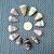 12 Assorted Cone Shells