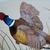Pheasant In Flight Painting, fine art, original, realism, wildlife, acrylic,