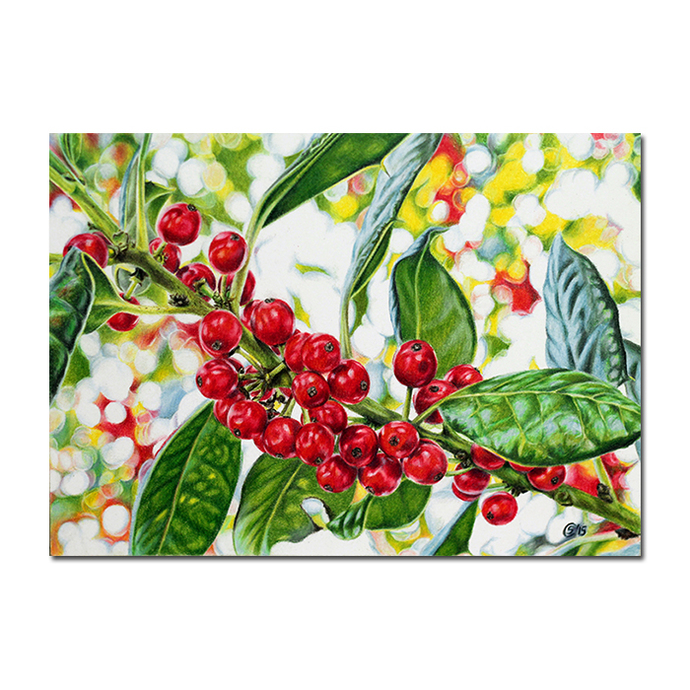 BERRIES winter red leaves colored pencils painting Sandrine Curtiss Art ORIGINAL