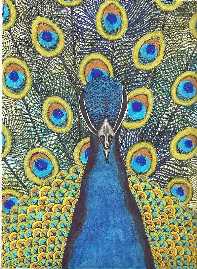 Pretty Peacock-matted print