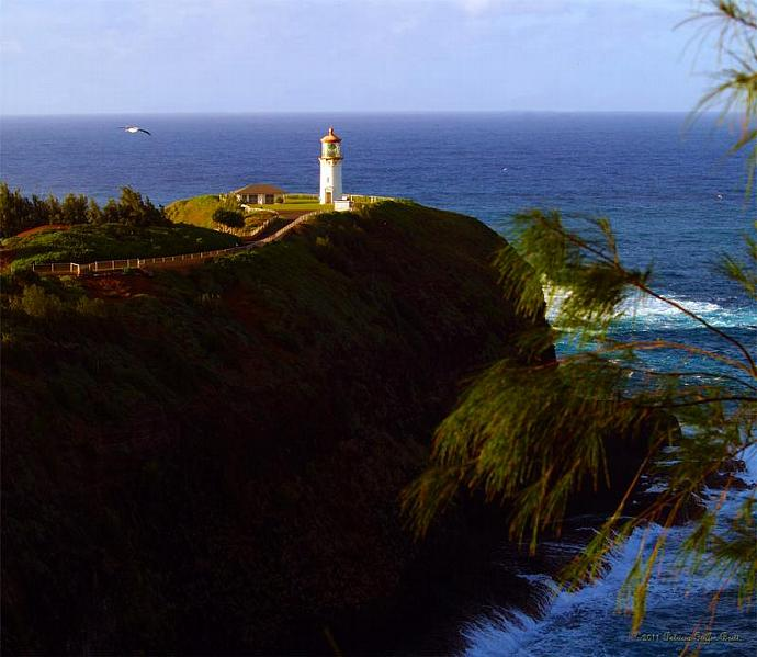Kilauea Lighthouse 1- fine art photographic print