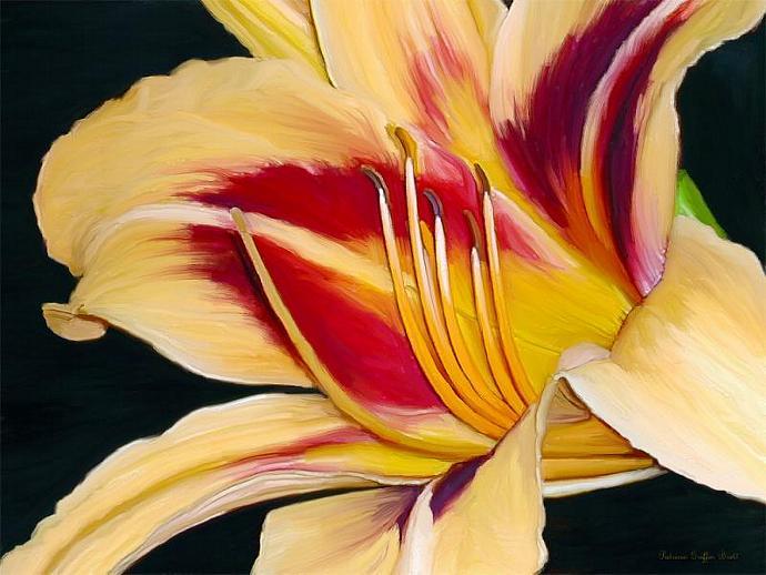 Black-Eyed Susan Daylily I-digital painting