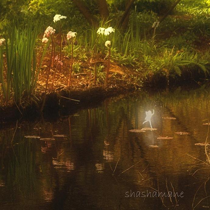 "Secret, Enchanted Lake 5 x 7"" fine art photography print - Magic scene"