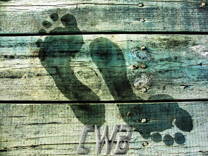 Wet Feet photographic art print