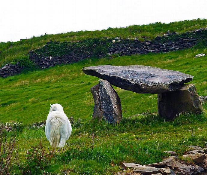 Irish Standing Stones- fine art photograph