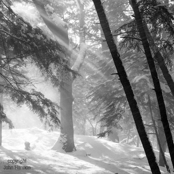 Winter Light Sun Rays Passing Through Falling Snow