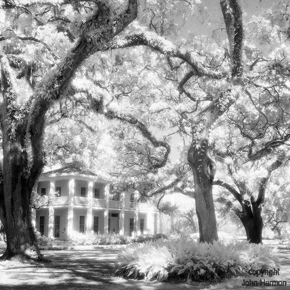 Eden State Park Florida An Infrared Photograph-