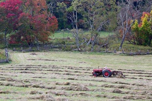 A Masey Ferguson Tractor Raking Hay on the Blue Ridge Parkway