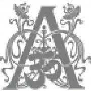 Profile adivasibody994171430