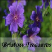 Profile bristowtreasures1637143078