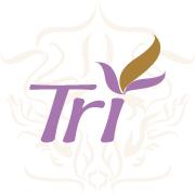 Profile tri avatar